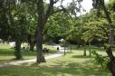 A park in Waikiki